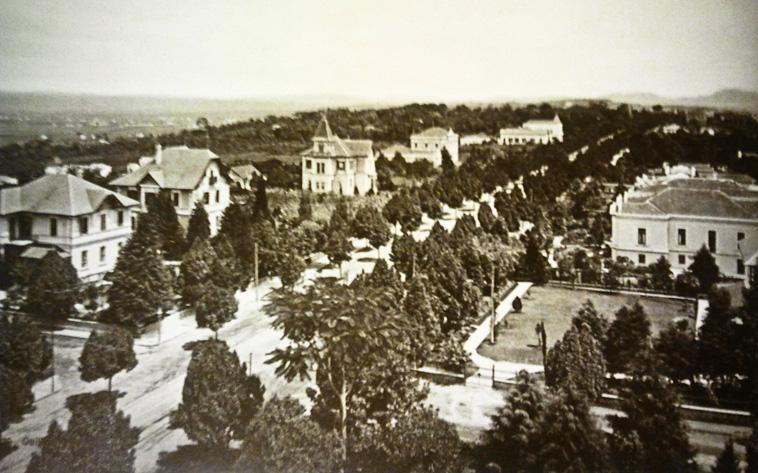 Old photo, aerial, black and white. It shows the entire avenue diagonally, all bordered by several trees and several mansions on both sides. In the background, view of the city almost without any construction.