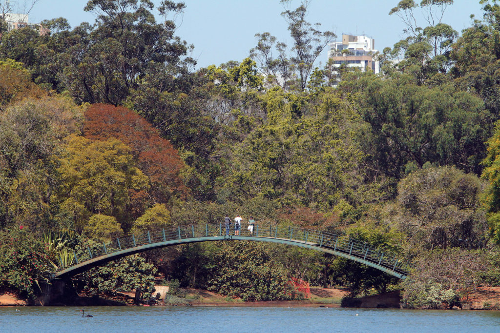 Small bridge in the shape of a light blue arch with some people on it, watching below a large lake where some swans swim. In the background, dense vegetation formed by shrubs and large trees