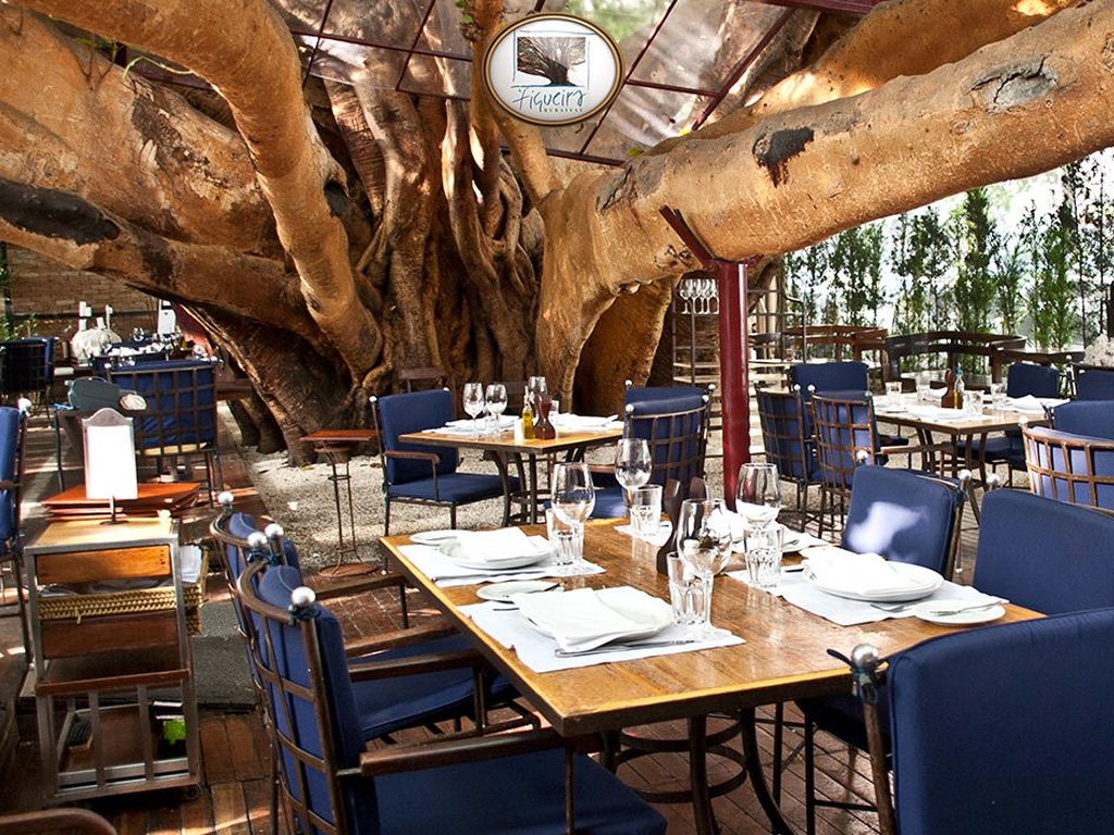 In the foreground, several tables topped with light wood, all arranged with crockery, glasses and fine cutlery. Chairs with metal frame and wood and navy blue cushions on the back and seat. In the background, the enormous trunks of a fig tree stand under a glass roof.
