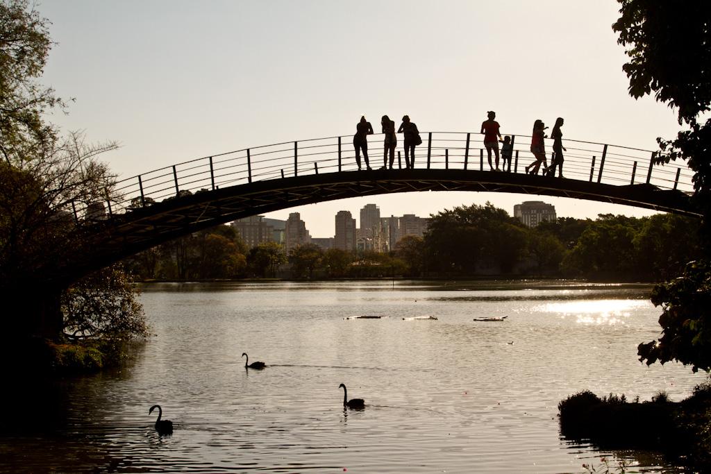 Fotos feitas no final da tarde, contra a luz, todas as figuras estão sombreadas. Na parte superior, pequena ponte na forma de um arco com algumas pessoas sobre a mesma, observam abaixo um grande lago cercado por arbustos e grandes árvores, onde nadam 3 cisnes. Ao fundo, skyline da cidade.