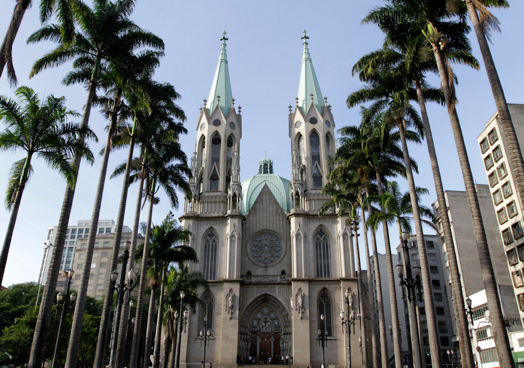 In the first plane, on both sides of the image, a row with very high imperial palms. In the center and in the background, cathedral neogothic style in shades of light gray. The facade, with a main portal and a large rose window, is flanked by two tall towers, both with a pointed ceiling, light green and very high.