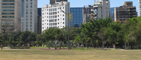 Large grassy area and with a dense green area in the background, composed of several large trees, on a very sunny day. Behind the square, several buildings.