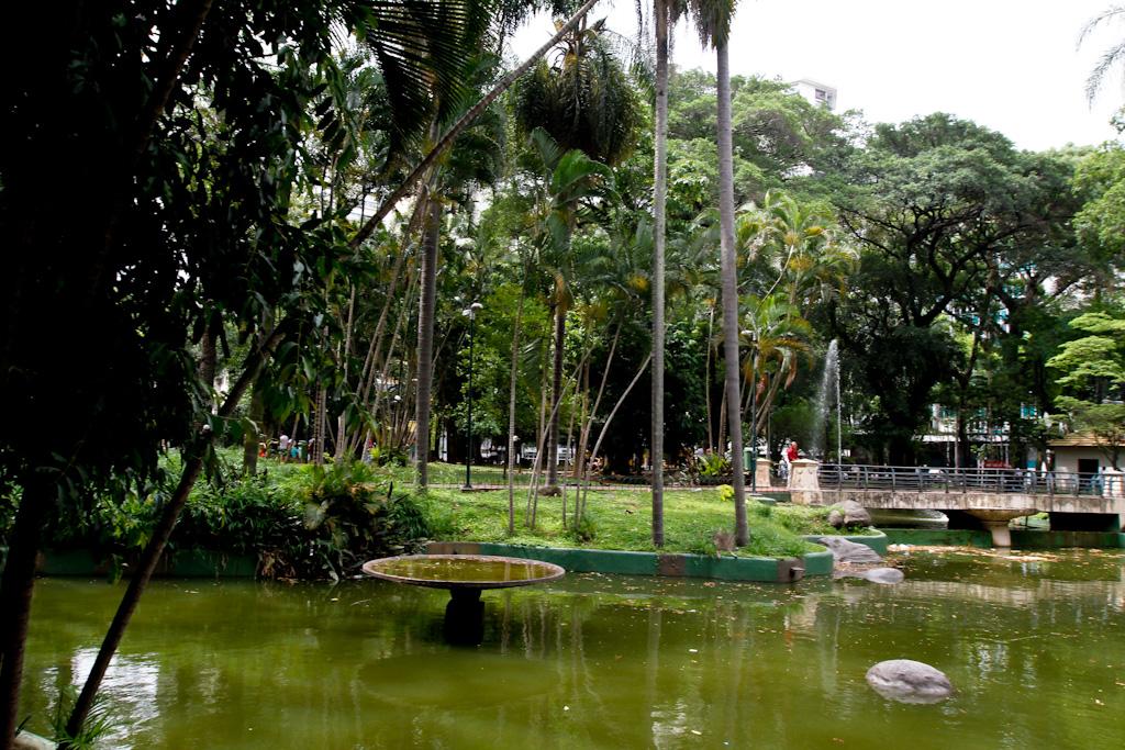 No primeiro plano, pequeno lago de águas esverdeadas. Nas margens laterais, jardins gramados com arbustos e algumas árvores de tamanho médio. No centro, pequena ponte de concreto com grades de ferro cinza, por onde passam algumas pessoas. Ao fundo, jardim com muitas árvores de grande porte.